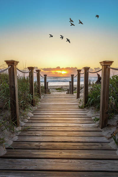 Wall Art - Photograph - Walking Into Paradise by Debra and Dave Vanderlaan