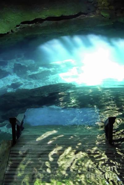 Photograph - Walking Into The Cenote by D Hackett