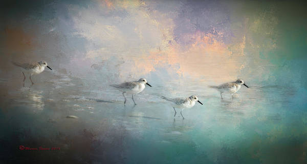Bird Watching Digital Art - Walking Into The Sunset by Marvin Spates