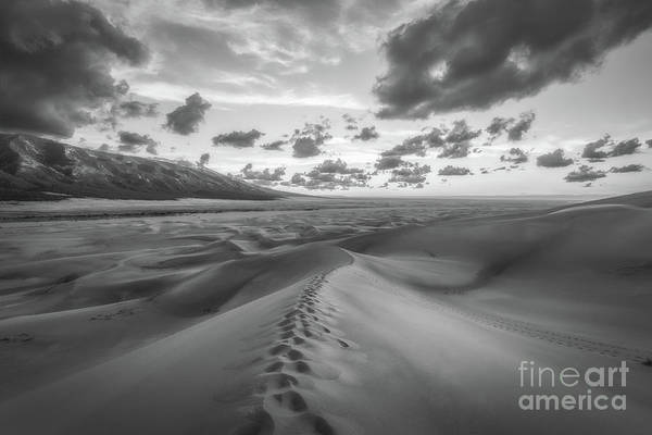 Great Sand Dunes National Park Photograph - Walking On Sand Bw by Michael Ver Sprill