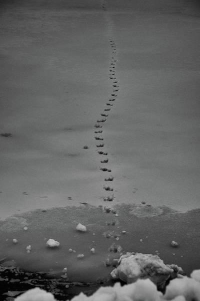 Walking On Thin Ice Art Print