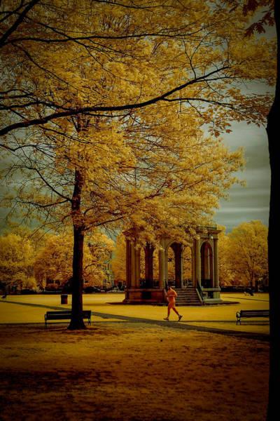 Photograph - Walking Salem Common by Jeff Folger