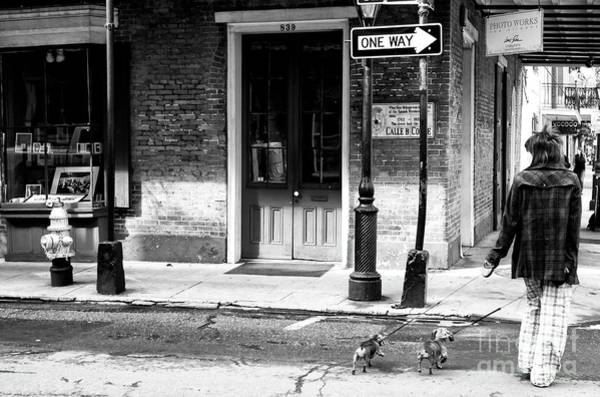 Photograph - Walking The Dachshunds In New Orleans by John Rizzuto