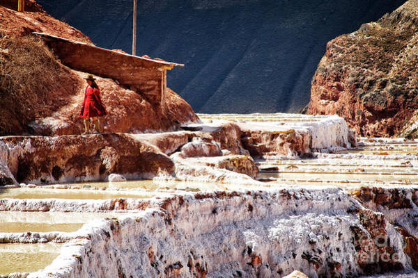 Photograph - Walking The Salt Pans by Scott Kemper