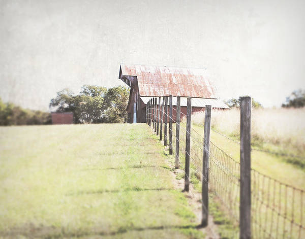 Photograph - Walking The Straight Line by Julie Hamilton