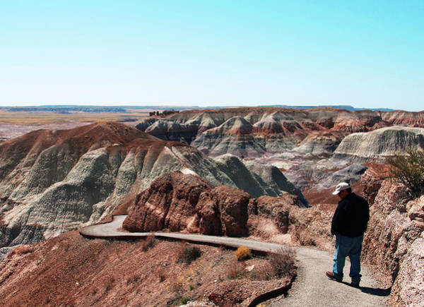 Photograph - Walking Through The Painted Desert by Mary Capriole