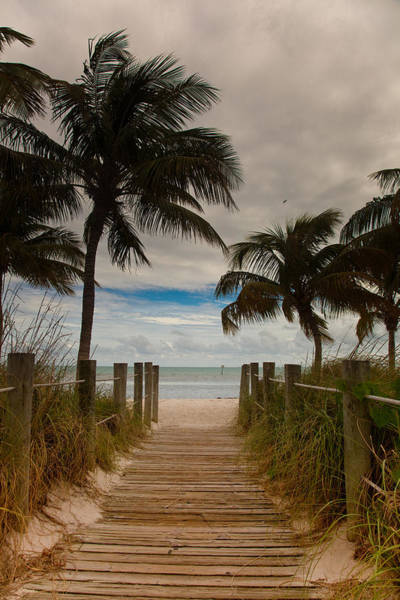 Wall Art - Photograph - Walking To The Beach by Patrick  Flynn