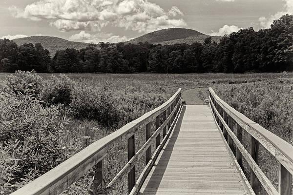 Photograph - Walkway To A Mountain Monochrome by Nancy De Flon
