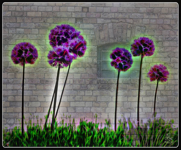 Digital Art - Wall-flower by Pennie McCracken
