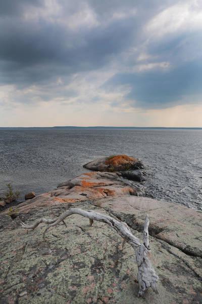 Photograph - Wall Island Lichen Driftwood 3640 by Steve Somerville