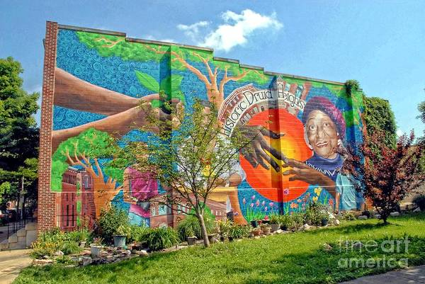 Photograph - Wall Of Historic Druid Heights by Walter Neal