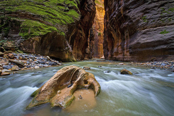 Photograph - Wall Street Of The Narrows by Wesley Aston