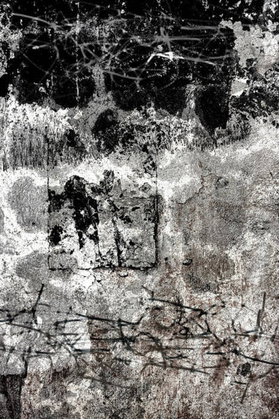 Wall Art - Photograph - Wall Texture Number 15 by Carol Leigh