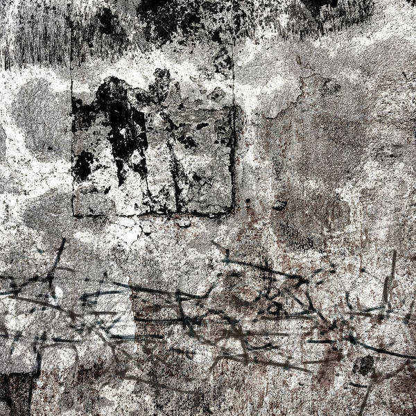 Wall Art - Photograph - Wall Texture Number 15 Square 01 by Carol Leigh
