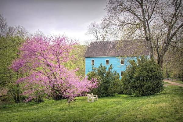 Photograph - Walnford In Spring by Kristia Adams