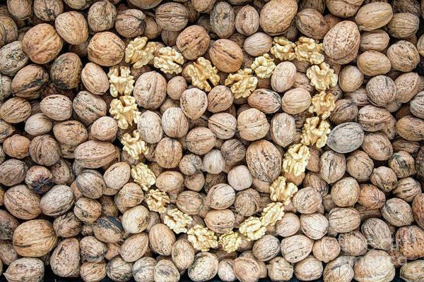 Wall Art - Photograph - Walnuts And Nut Kernels by Michal Boubin