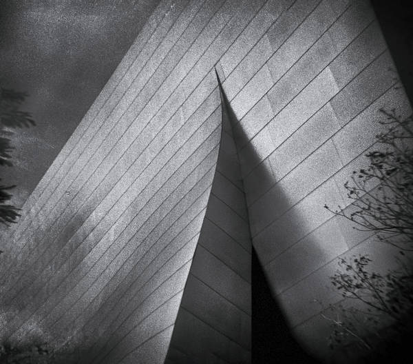Photograph - Walt Disney Concert Hall 1 by Denise Dube