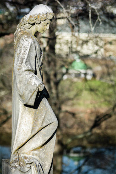 Photograph - Wandering Lady Of Myrtle Hill by James L Bartlett