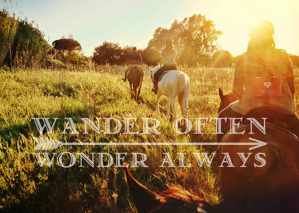 Photograph - Wandering Rome Quote by Dressage Design