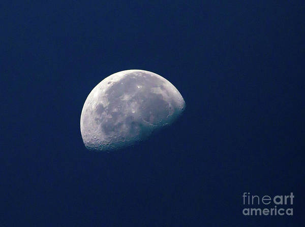 Photograph - Waning Gibbous Moon by Kevin McCarthy