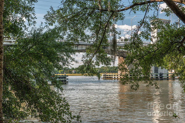 Photograph - Wappo Cut Bridge Through The Live Oaks by Dale Powell