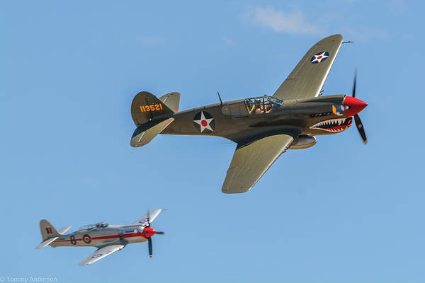 Hawker Sea Fury Photograph - Warhawk And Sea Fury by Tommy Anderson