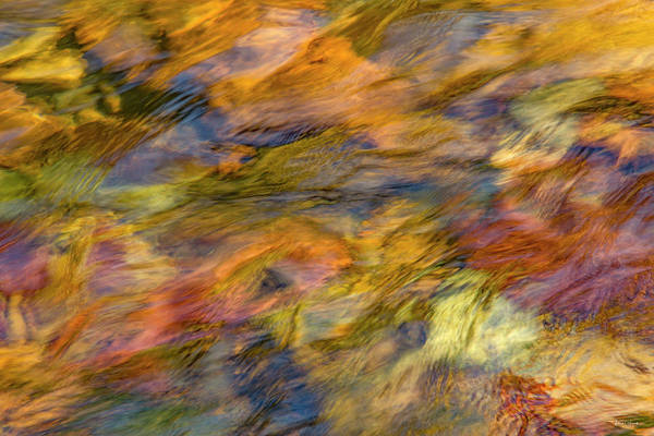 Photograph - Warm Ambience Flows by Leland D Howard