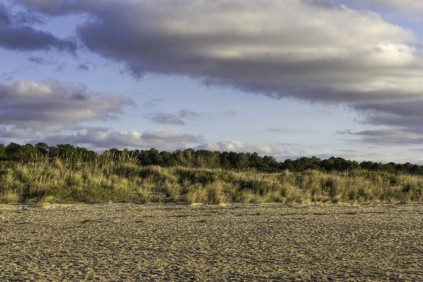 Photograph - Warm Dunes by Pete Federico
