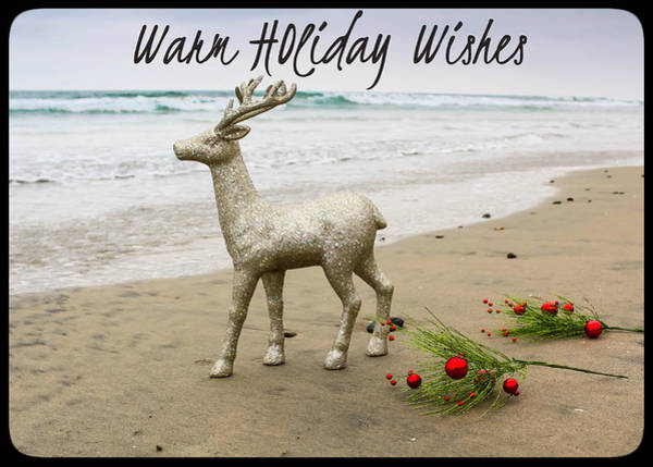 Photograph - Warm Holiday Wishes by Alison Frank