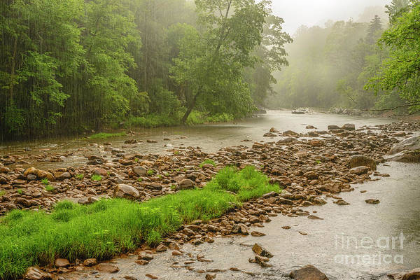 Photograph - Warm Morning Rain Williams River by Thomas R Fletcher