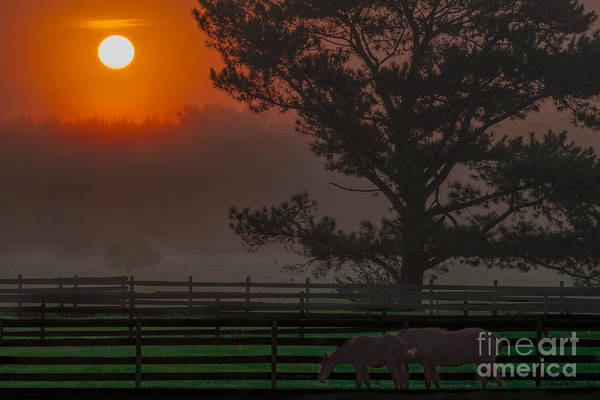 Photograph - Warm Sunrise by James Hennis