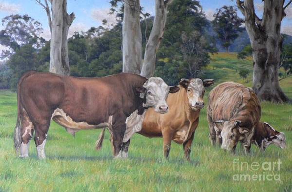 Hereford Bull Painting - Warrawillah Cattle by Louise Green
