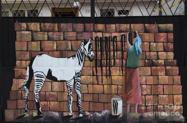 Wall Art - Photograph - Wash Day For Zebras by Al Bourassa