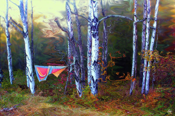 Photograph - Washday In The Magic Grove by Wayne King