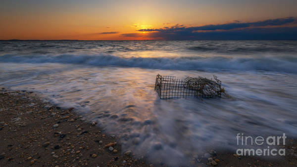 Sandy Hook Wall Art - Photograph - Washed Up Crab Cage 16x9 by Michael Ver Sprill