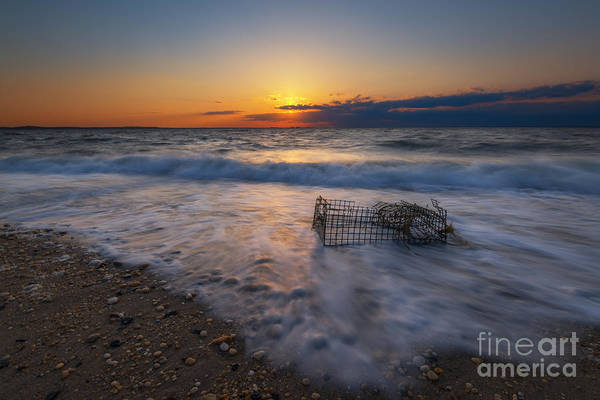 Sandy Hook Wall Art - Photograph - Washed Up Crab Trap by Michael Ver Sprill
