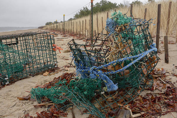 Photograph - Washed Up Lobster Trap by Kirkodd Photography Of New England