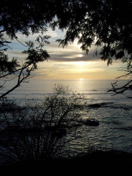 Photograph - Washington Island Morning 4 by Anita Burgermeister