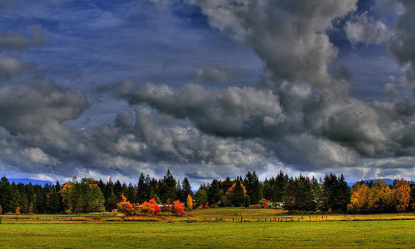Photograph - Washington Landscape by David Patterson