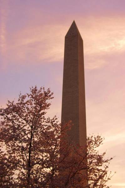 Photograph - Washington Monument Close Up by Buddy Scott