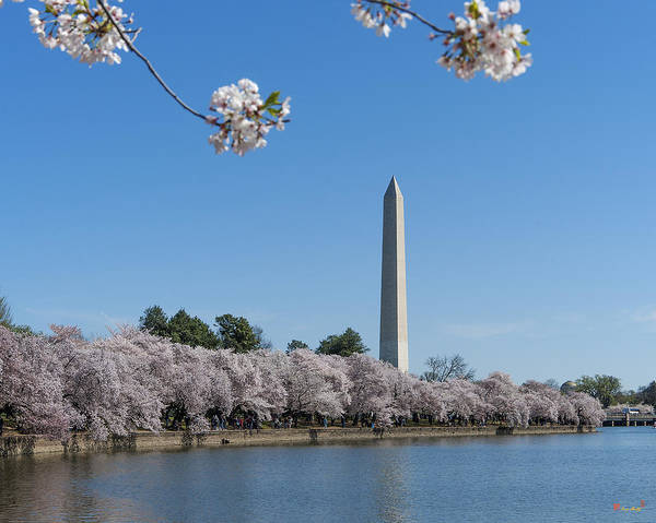 Photograph - Washington Monument From The Tidal Basin Ds0064 by Gerry Gantt