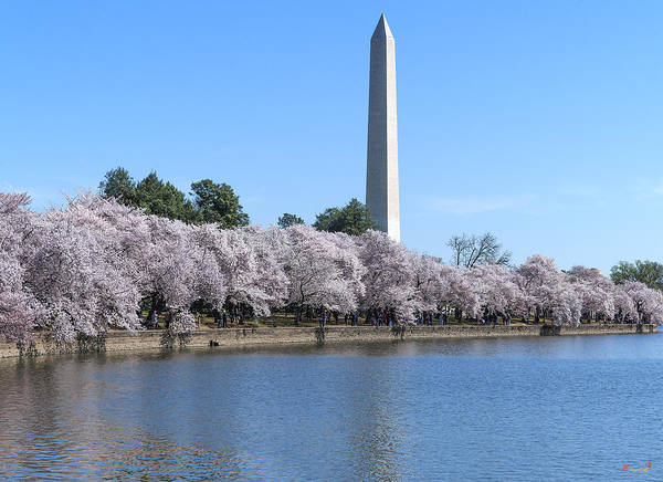 Photograph - Washington Monument From The Tidal Basin Ds0065 by Gerry Gantt