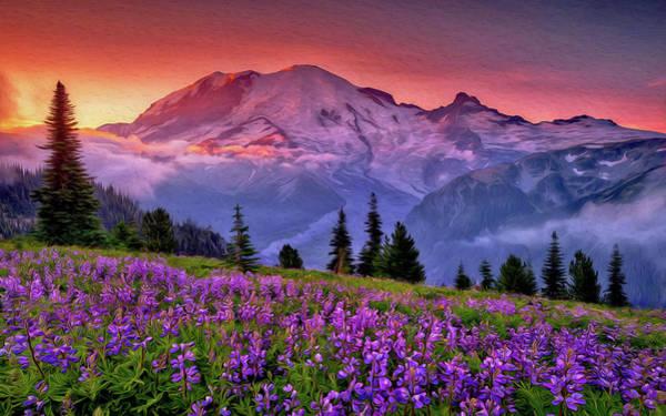 Washington, Mt Rainier National Park - 05 Art Print