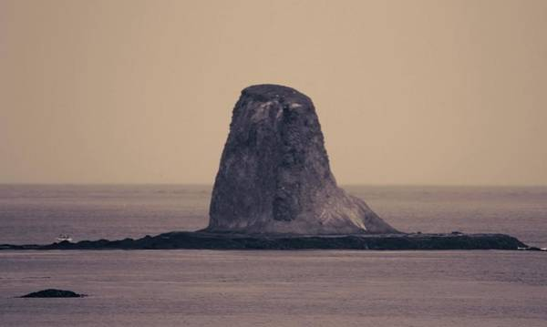 Photograph - Washington State Sea Stack Sepia by Dan Sproul