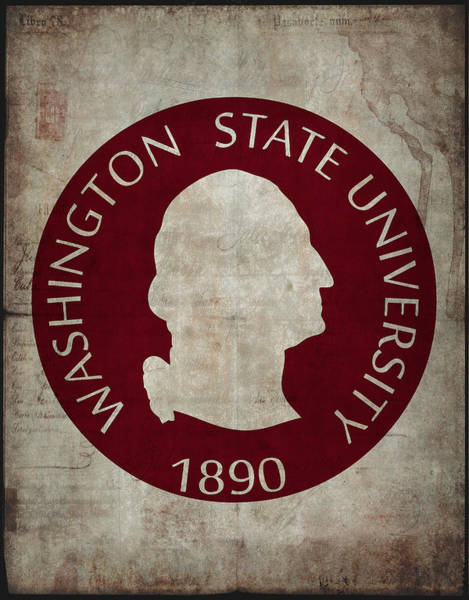 Wall Art - Digital Art - Washington State University Seal Grunge by Daniel Hagerman