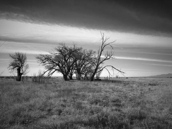 Photograph - Wasteland by Brad Hodges
