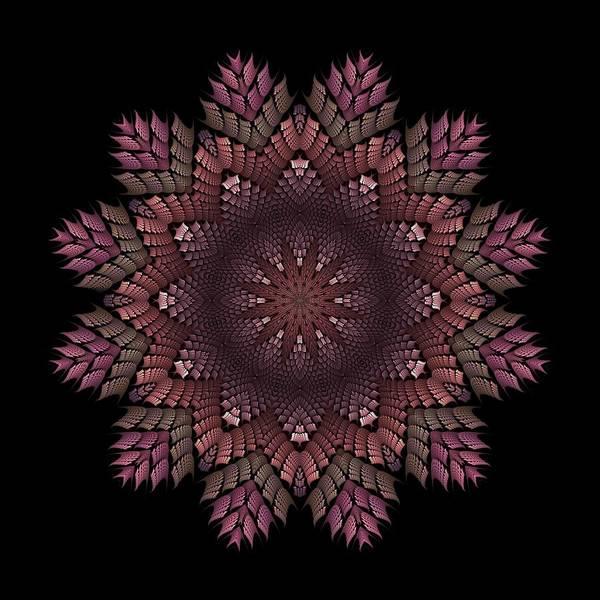 Digital Art - Watanabe-4 Fractal K12 Blossom by Doug Morgan