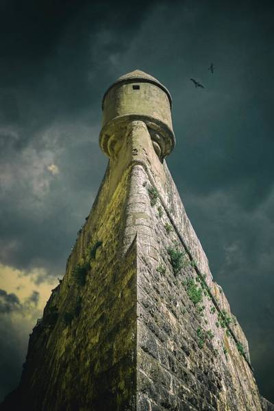 Sentinel Photograph - Watch Tower by Carlos Caetano