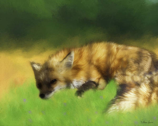 Photograph - Watchful Napping Fox by Anna Louise