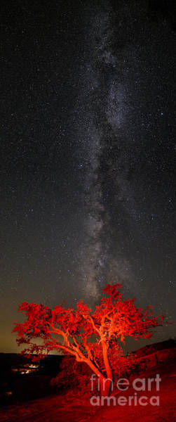 Enchanted Rock State Park Photograph - Watching In Awe As The Milky Way Rises Panorama - Enchanted Rock Fredericksburg Texas Hill Country by Silvio Ligutti